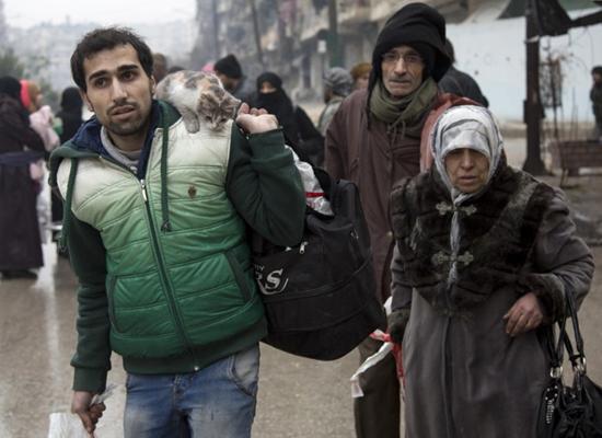 """صورة سوري يرأف بـ""""قطته"""" في حلب عندما حرم الإنسان من حقوقه"""