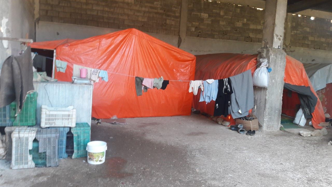 صورة مزارع الأبقار مأوى لعائلات فلسطينية بدرعا