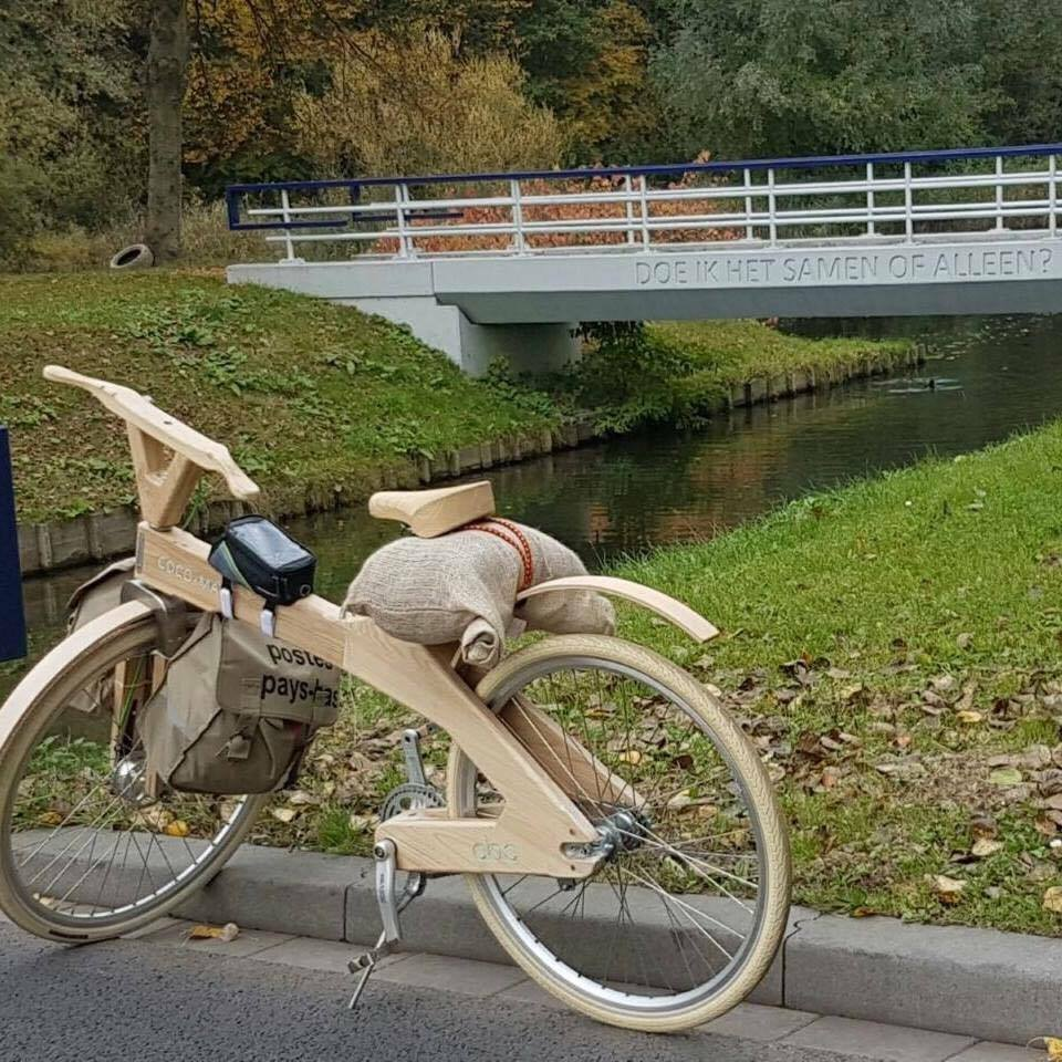 صورة بواسطة دراجات خشبية..هولنديان قصدا مكة لتنظيف جبل النور