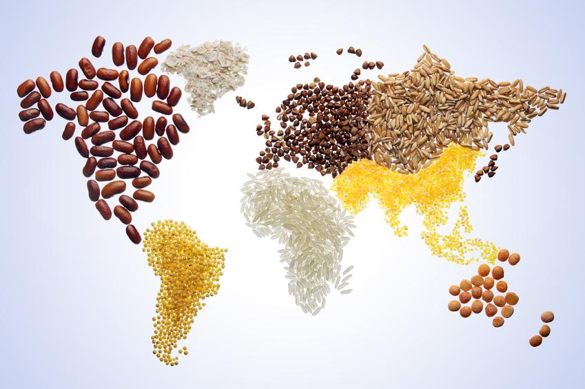 صورة أسعار الغذاء العالمية ترتفع لأعلى مستوياتها