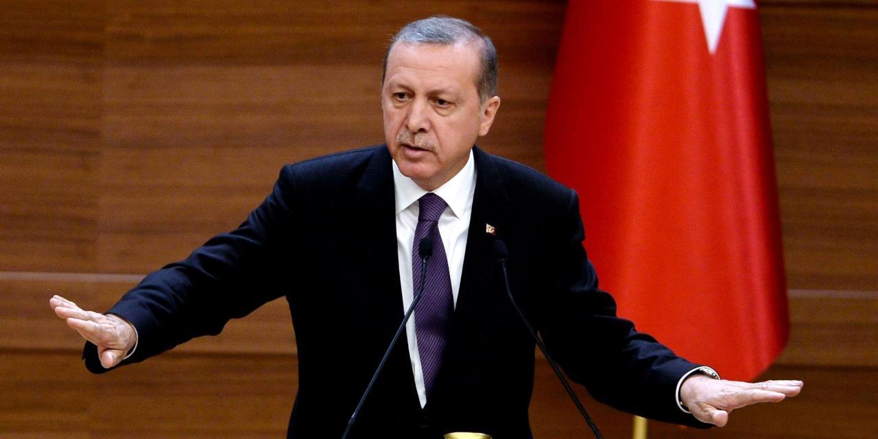 صورة أردوغان: ينبغي تحرير سوريا من الأسد