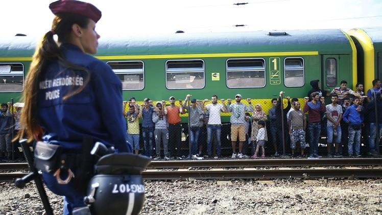 صورة تعرف على نسبة السوريين القاصرين بأوروبا؟