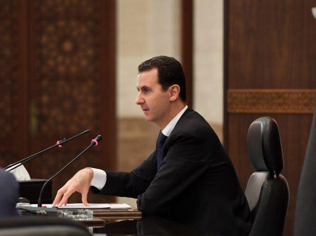 صورة الأسد:أقود سيارتي وأقف على الحواجز!