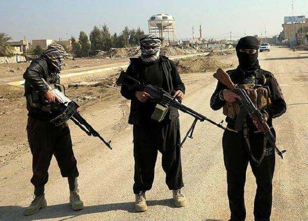صورة تحرير الشام: ضبط خلية للتنظيم بإدلب