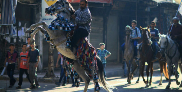 صورة سرّاج الخيل..مهنة تلقى رواجا بريف دمشق