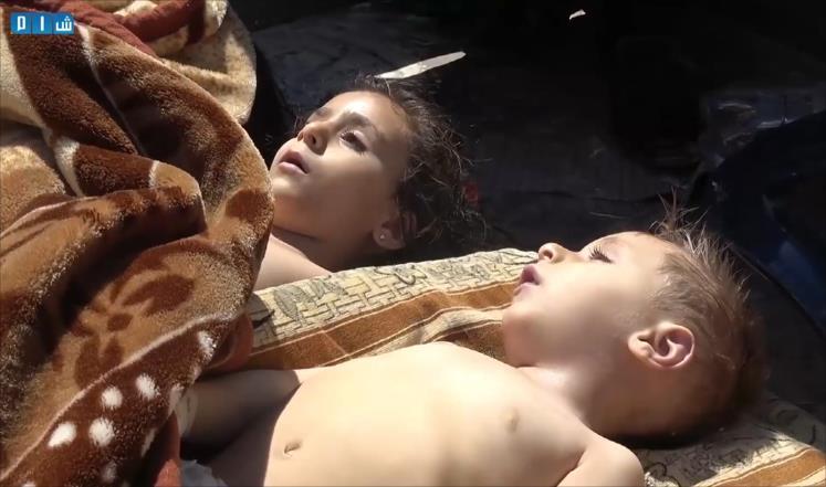 صورة منظمة حظر الأسلحة تؤكد استخدام السارين بريف حماة