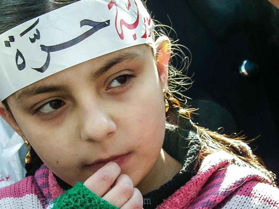 صورة تركيا: بإحلال الديمقراطية ستحل مسألة سوريا