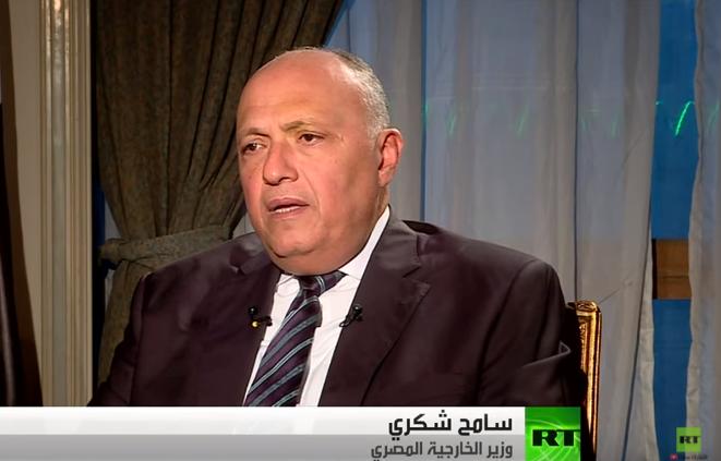 صورة وزير الخارجية المصري: خفض التصعيد يساهم بالإنفراج في سوريا