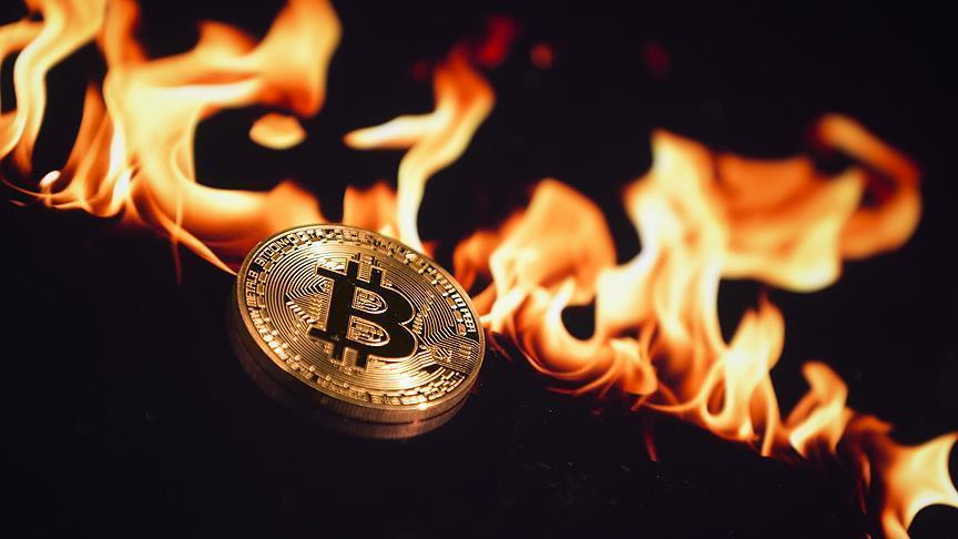 صورة 73 مليار دولار خسائر العملات الافتراضية
