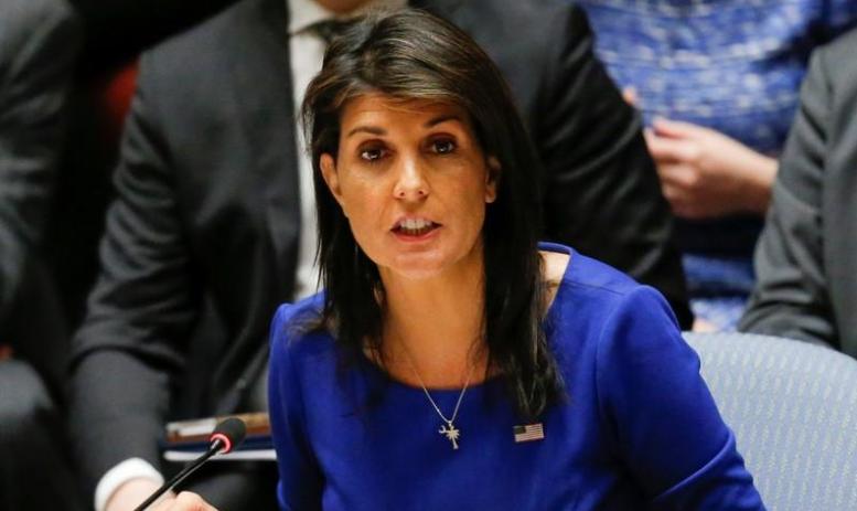 صورة هيلي: لن نغادر سوريا حتى تحقيق الأهداف