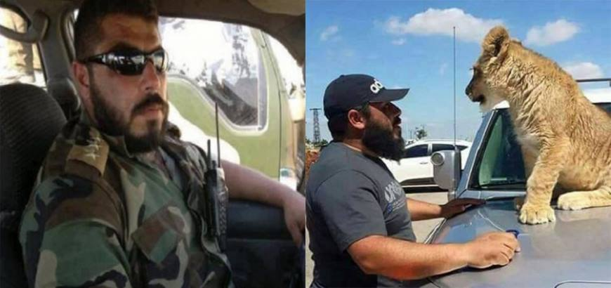 صورة شبيح للأسد يطعم فرساً للأسود بعد إطعامها معتقليه