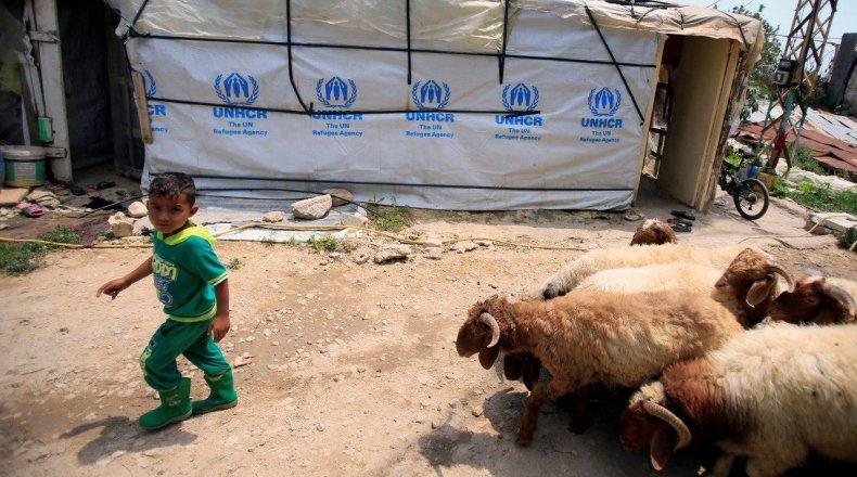 صورة مساعدات من هولندا للدول المتأثرة باللجوء السوري