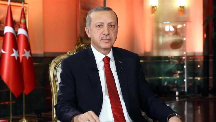 """صورة أردوغان: استقرار سوريا """"مرتبط بقوة تركيا"""""""