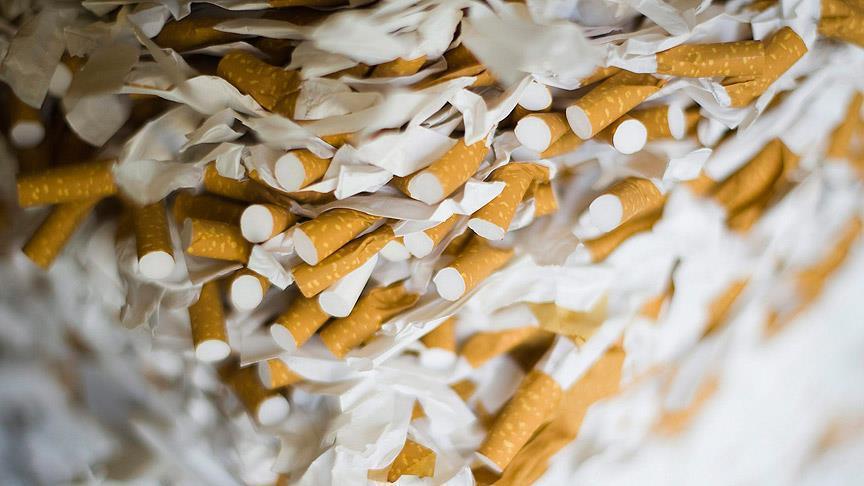 صورة التبغ يقتل 3 ملايين سنويا و1.1 مليار مدخن حول العالم