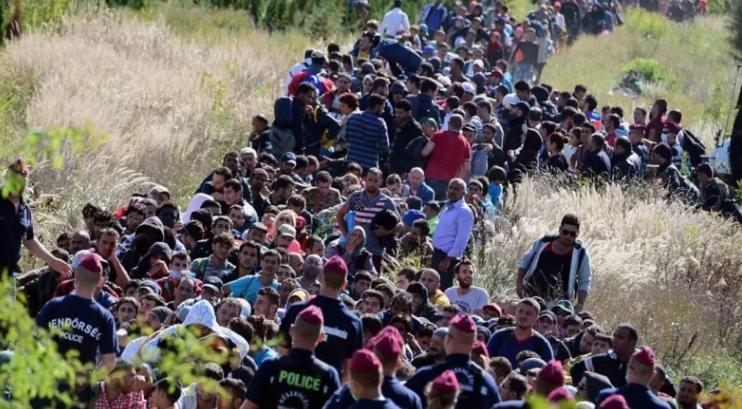 """صورة """"الاختطاف الشرعي"""".. كابوس """"اللاجئين"""" في أوروبا"""