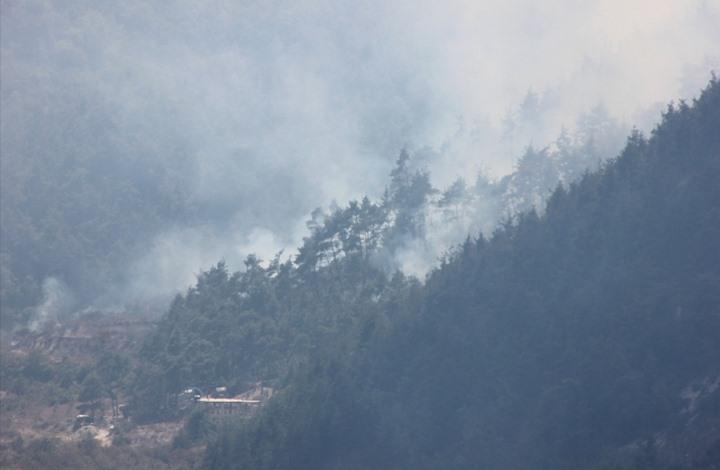 صورة صواريخ نظام الأسد تحرق غابات بريف اللاذقية