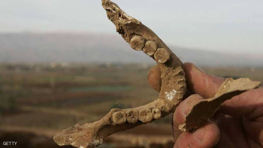 """صورة الرقة..انتشال جثث جديدة من مقبرة """"البانوراما"""""""