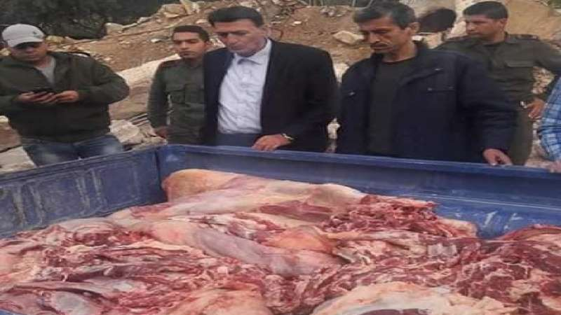 صورة حماة..لحوم حمير وبغال بمناطق سيطرة النظام