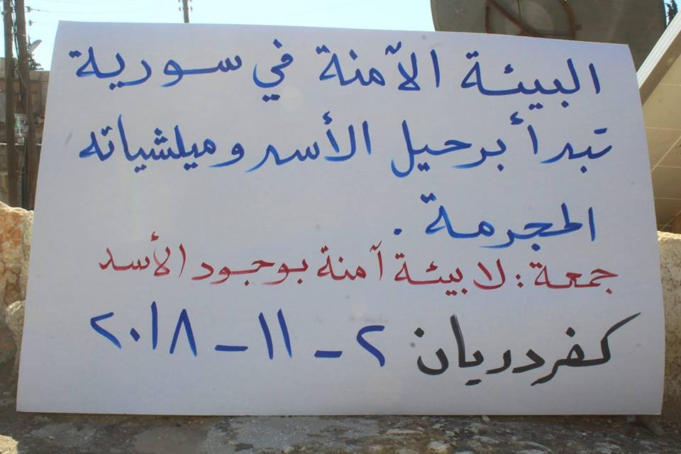 """صورة """"لا بيئة آمنة بوجود الأسد"""""""