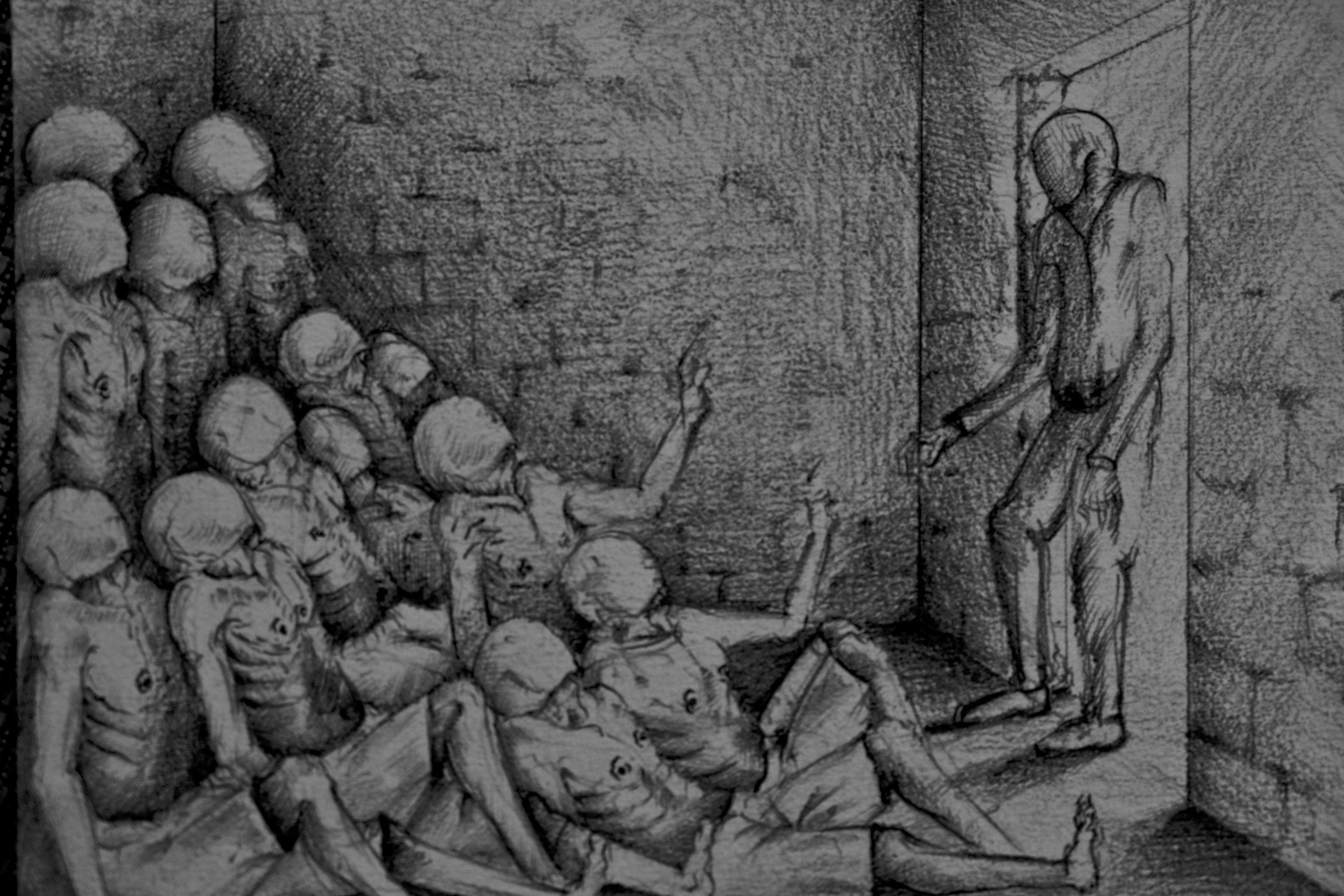 صورة فظائع الأسد مستمرة بحق معتقلي سجن صيدنايا دون أي رادع