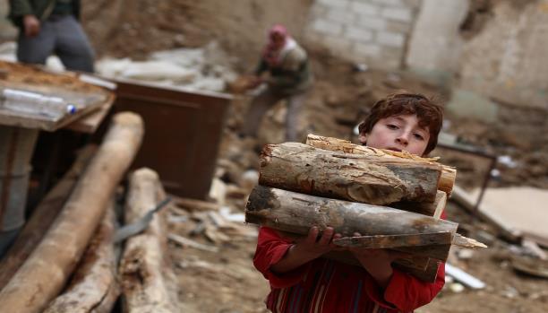 """صورة غابات سوريا.. نصفها لـ """"التدفئة"""" والآخر لـ """"الأركيلة""""!"""