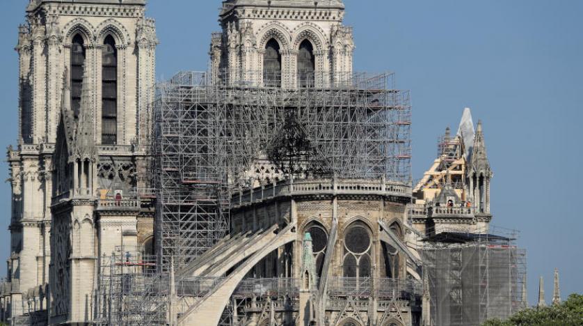صورة نجاة 200 ألف نحلة من حريق كاتدرائية نوتردام