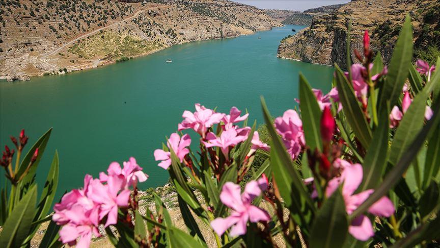 """صورة ماذا تعرف عن """"أرض الأنبياء"""" في ديار بكر التركية؟"""