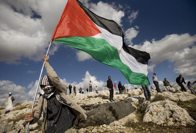 صورة من قلب إسرائيل.. دولتنا بدأت تنهار!