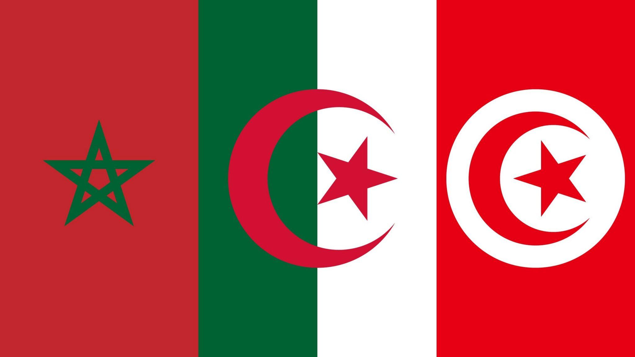 صورة بالفيديو: وزير خارجية تونس السابق ينتـ ـقد نظام العـ.ـسكر في الجزائر.. ماذاقال عن المغرب؟