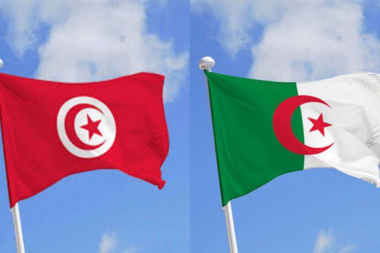 صورة موقف عربي قل نظيره.. الجزائر: سنتقاسم لقاحات كورونا مع الشقيقة تونس- فيديو