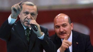 صورة وزير الداخلية سنمنح الجنسية التركية لدفعة جديدة من السوريين والمعارضة تغضب