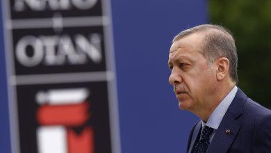 صورة سيغير خارطة العالم.. أردوغان يقدم لتركيا مشروعا عظيما (فيديو)