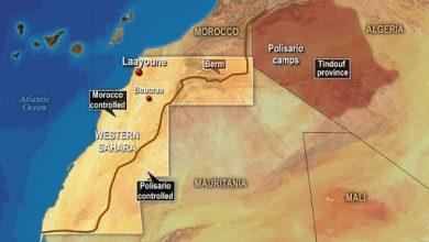 صورة ملف الصحراء الغربية يُفتح مجددا.. حراك أممي وحل خلال أشهر