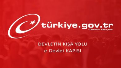 صورة بشرى سارة تشمل السوريين في تركيا.. خدمة جديدة عبر تطبيق E-DEVLET تتيح استخراج ورقة أعزب إلكترونياً
