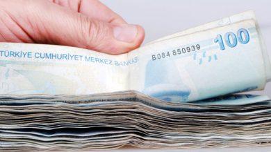 صورة بالفيديو والصور طريقة التأكد من وصول المساعدة المالية خطوة بخطوة