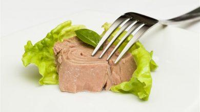 صورة أيهما الأفضل لصحتك.. التونة أم السردين؟