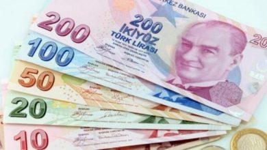 صورة قيمتها 300ليرة توزيع قسائم شرائية على العائلات السورية في هذه الولاية
