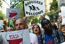 صورة 22800 سوري يحققون إنجازًا عظـ.ـيمًا في هولندا